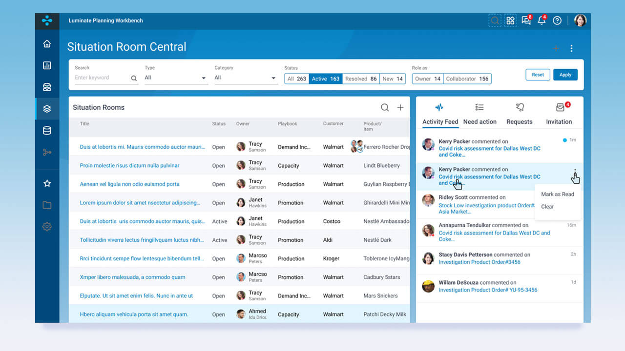 Sales & Operations Planning Screenshot